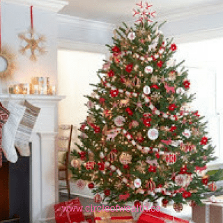 Where Should we put our Christmas Tree this year?