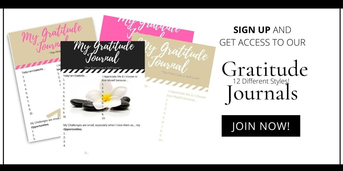 gratitude journal collection