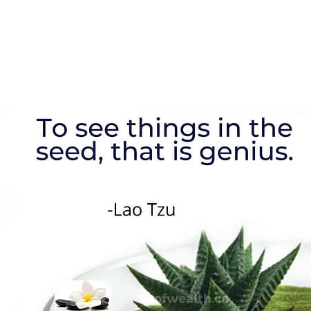 Lao Tzu Collection of Quotes