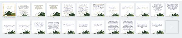 LAO TZU Quotes Collection