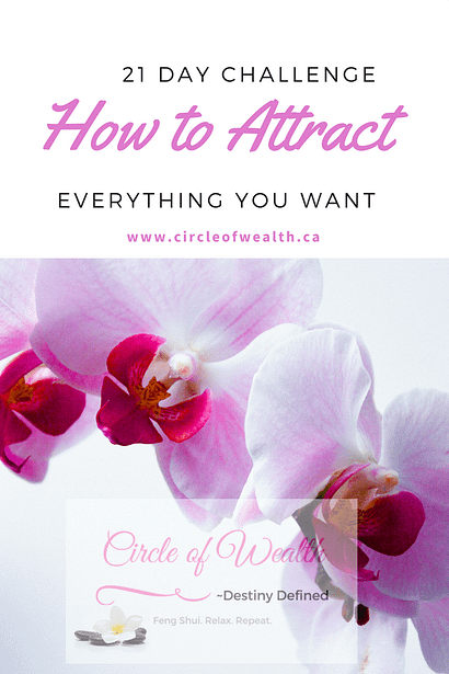 how to attract everything you want 21 day challenge