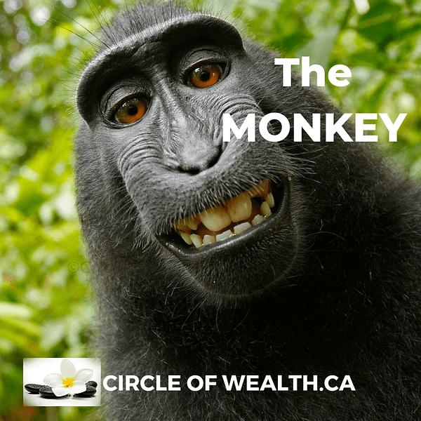 Chinese Zodiac the Monkey